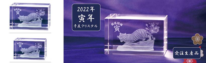 t2022b.jpg
